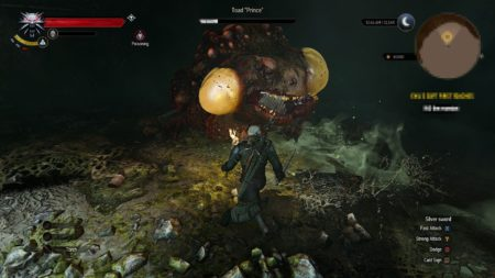 Image 6 : The Witcher 3 : l'extension Hearts of Stone s'illustre
